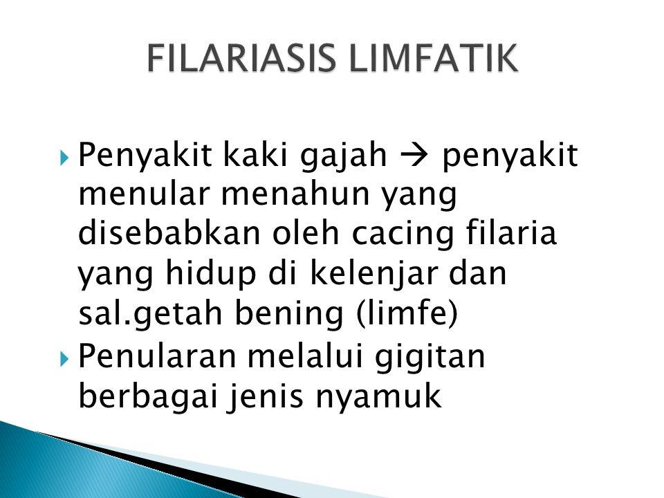 FILARIASIS LIMFATIK
