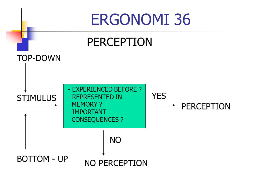 ERGONOMI 36 PERCEPTION TOP-DOWN YES STIMULUS PERCEPTION NO BOTTOM - UP