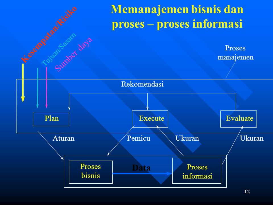 Memanajemen bisnis dan proses – proses informasi