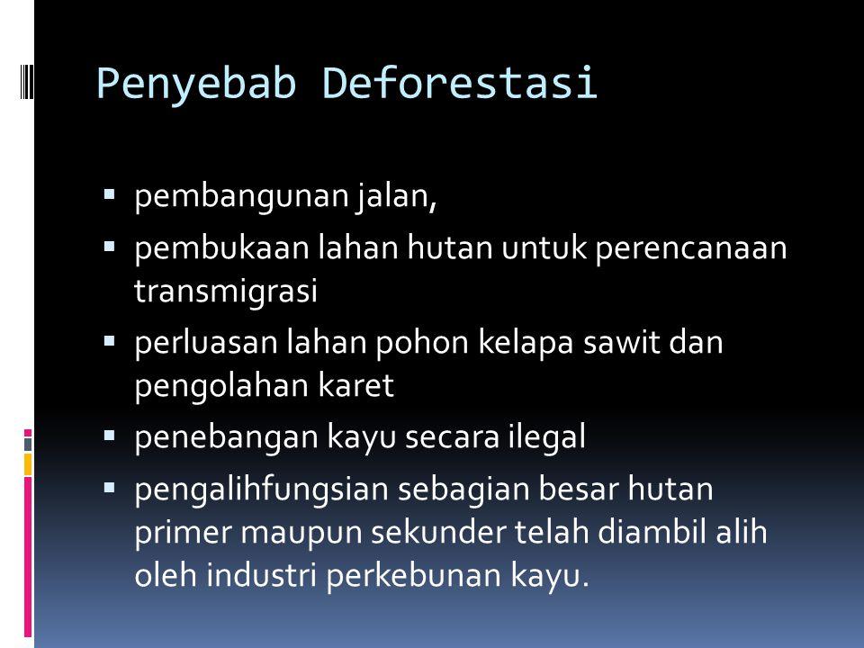 Penyebab Deforestasi pembangunan jalan,