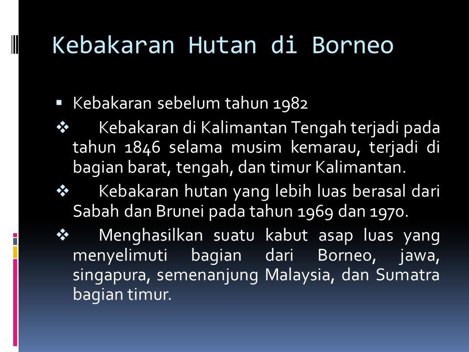 Kebakaran Hutan di Borneo