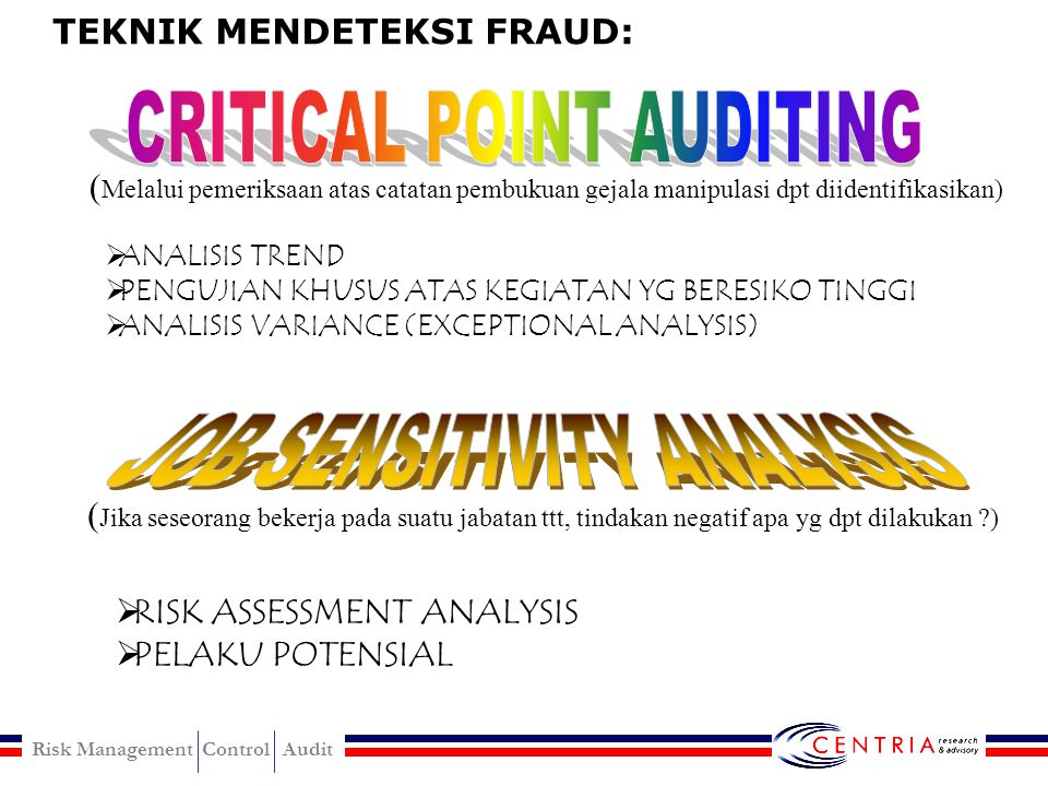 CRITICAL POINT AUDITING