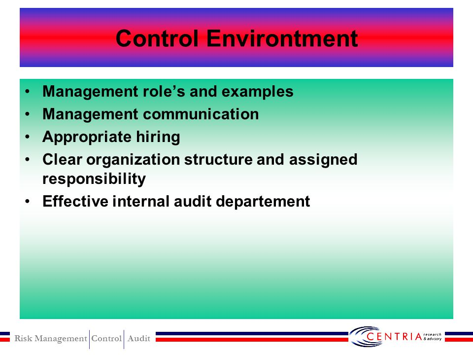 Control Environtment Management role's and examples