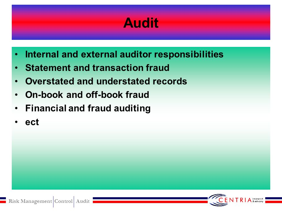 Audit Internal and external auditor responsibilities