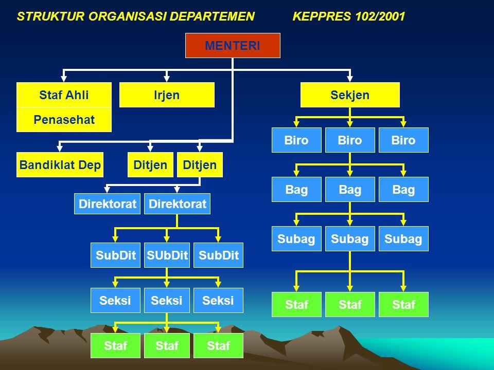 STRUKTUR ORGANISASI DEPARTEMEN