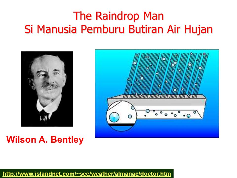 The Raindrop Man Si Manusia Pemburu Butiran Air Hujan