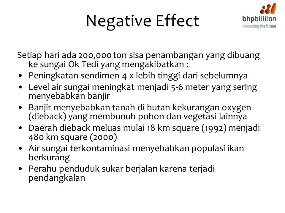 Negative Effect Setiap hari ada 200,000 ton sisa penambangan yang dibuang ke sungai Ok Tedi yang mengakibatkan :