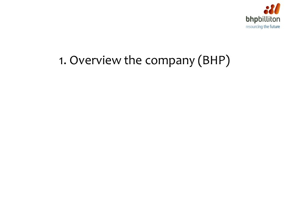 1. Overview the company (BHP)