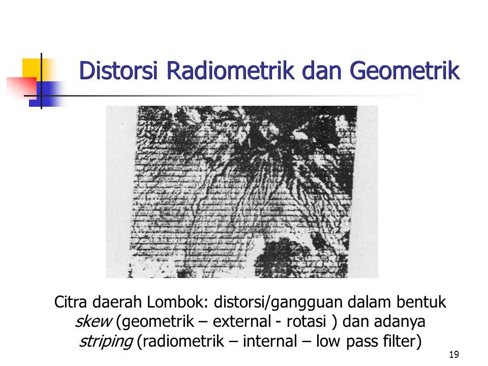 Distorsi Radiometrik dan Geometrik