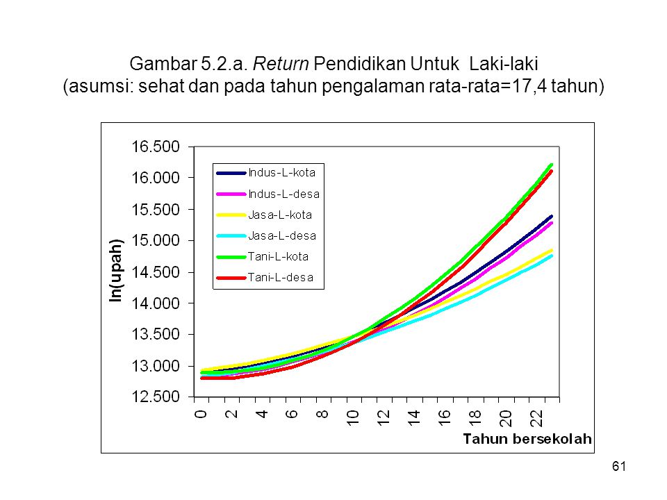 Gambar 5.2.a. Return Pendidikan Untuk Laki-laki (asumsi: sehat dan pada tahun pengalaman rata-rata=17,4 tahun)