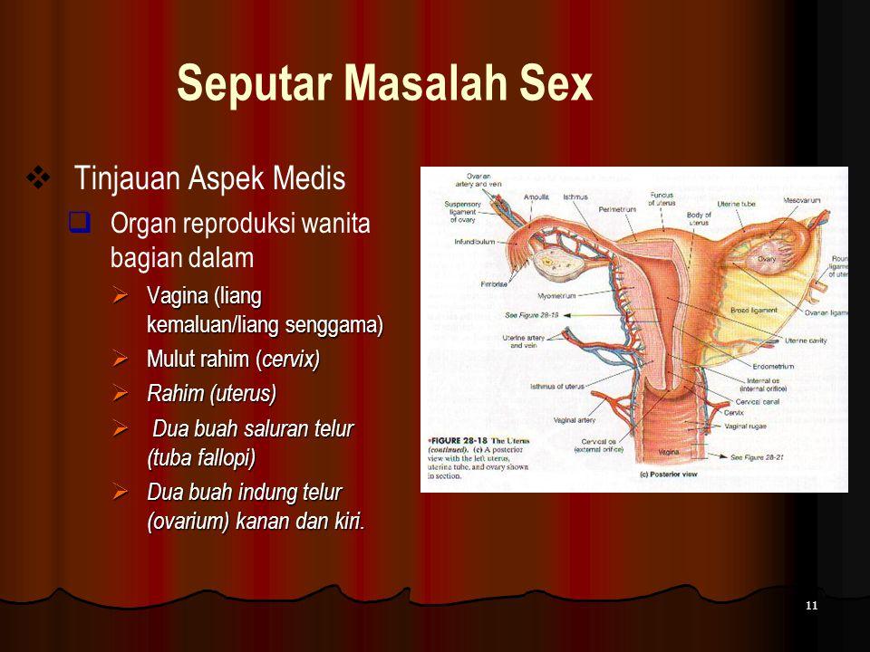 Seputar Masalah Sex Tinjauan Aspek Medis