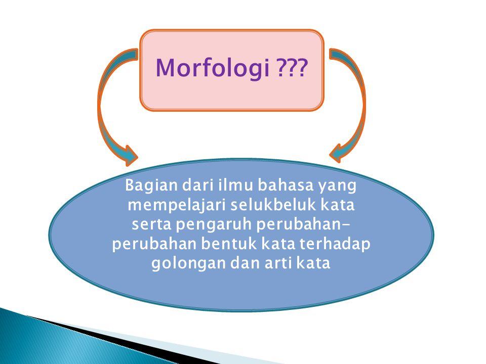Morfologi .