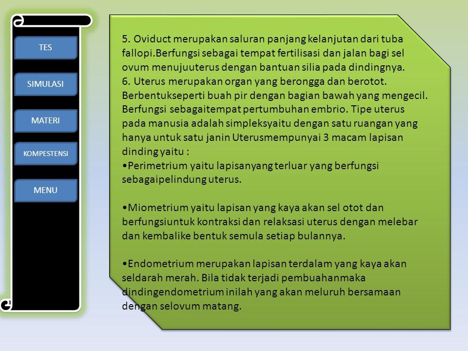 5. Oviduct merupakan saluran panjang kelanjutan dari tuba fallopi