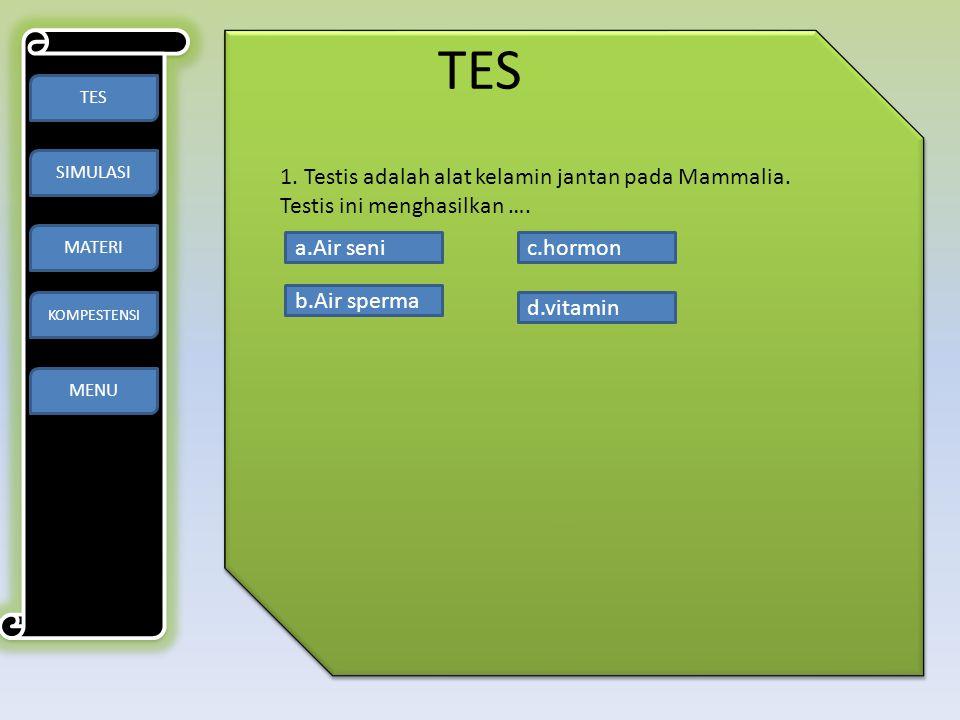 TES TES. SIMULASI. MATERI. KOMPESTENSI. 1. Testis adalah alat kelamin jantan pada Mammalia. Testis ini menghasilkan ….