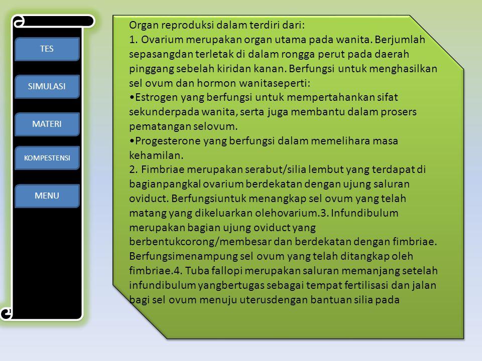 Organ reproduksi dalam terdiri dari: