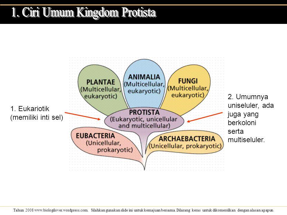 1. Ciri Umum Kingdom Protista