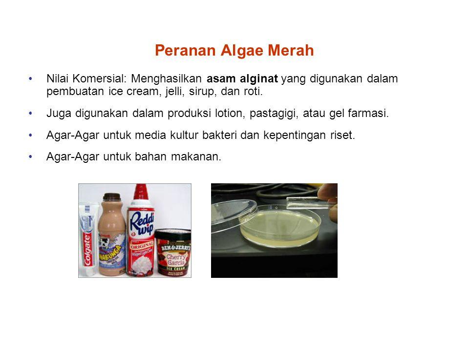Peranan Algae Merah Nilai Komersial: Menghasilkan asam alginat yang digunakan dalam pembuatan ice cream, jelli, sirup, dan roti.