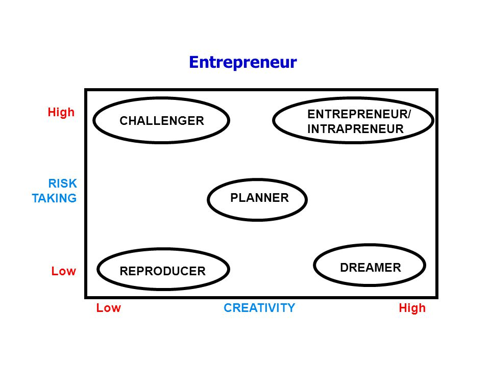 Entrepreneur ENTREPRENEUR/ INTRAPRENEUR DREAMER High Low RISK TAKING