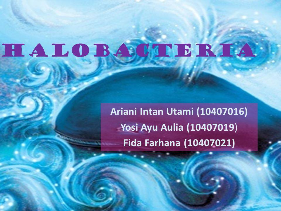 Halobacteria Ariani Intan Utami (10407016) Yosi Ayu Aulia (10407019)
