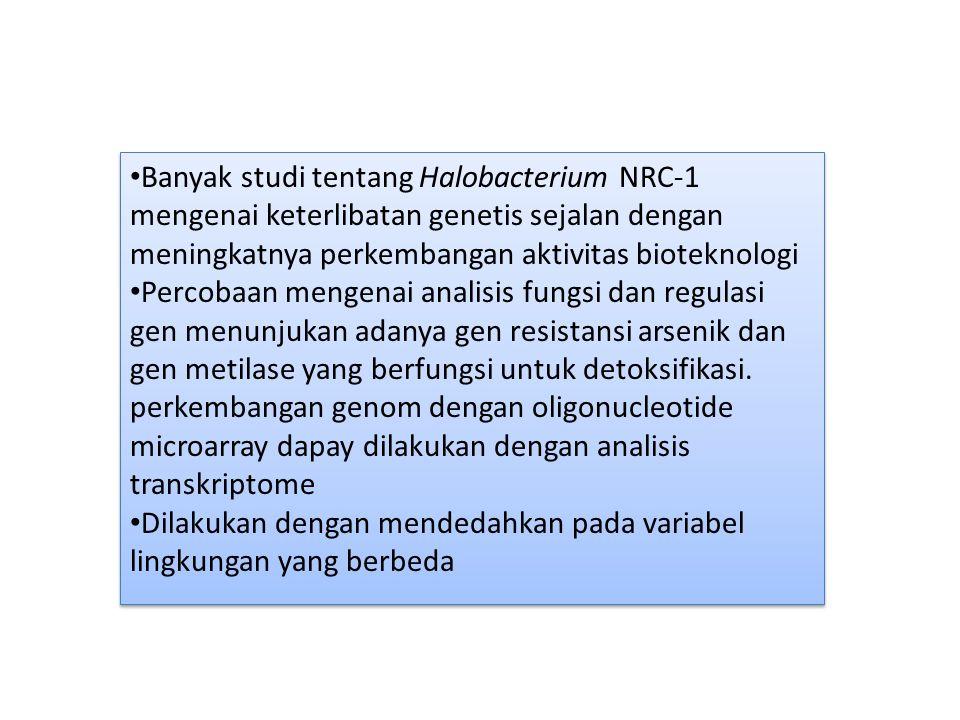 Banyak studi tentang Halobacterium NRC-1 mengenai keterlibatan genetis sejalan dengan meningkatnya perkembangan aktivitas bioteknologi