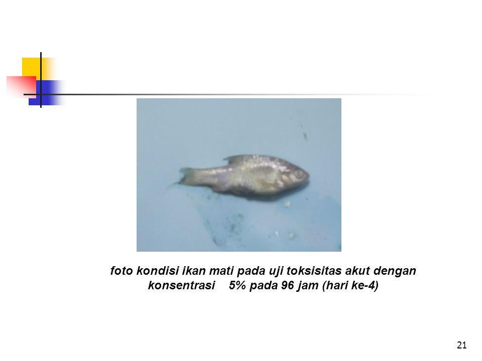 foto kondisi ikan mati pada uji toksisitas akut dengan konsentrasi 5% pada 96 jam (hari ke-4)