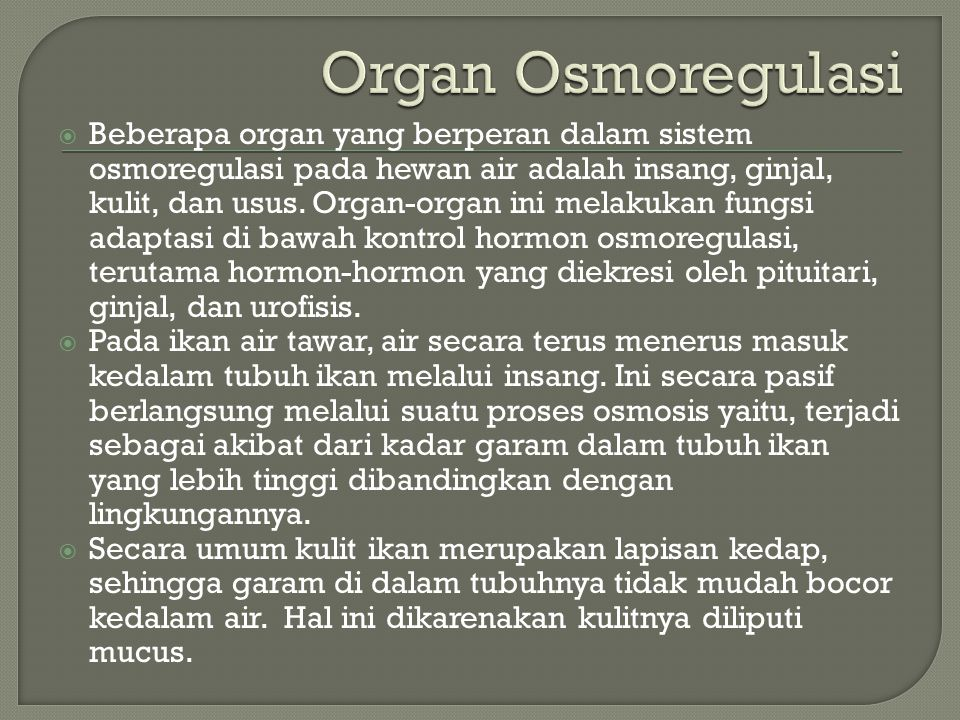 Organ Osmoregulasi
