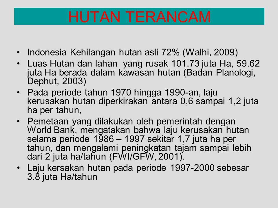 HUTAN TERANCAM Indonesia Kehilangan hutan asli 72% (Walhi, 2009)
