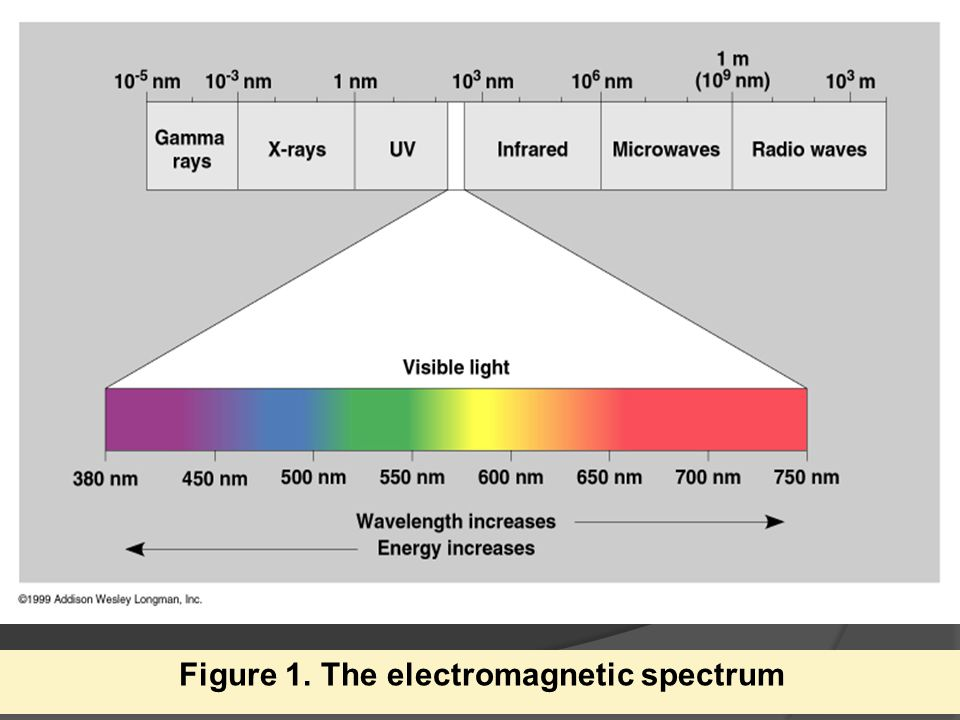 Figure 1. The electromagnetic spectrum