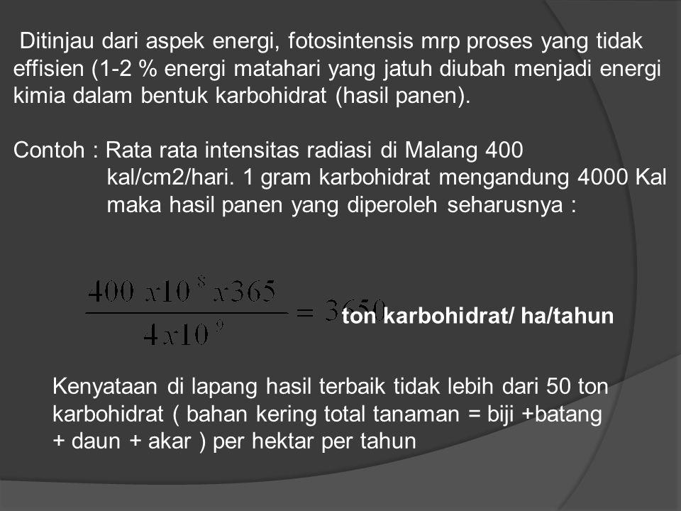 Ditinjau dari aspek energi, fotosintensis mrp proses yang tidak effisien (1-2 % energi matahari yang jatuh diubah menjadi energi kimia dalam bentuk karbohidrat (hasil panen).