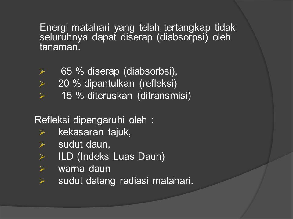 65 % diserap (diabsorbsi), 20 % dipantulkan (refleksi)