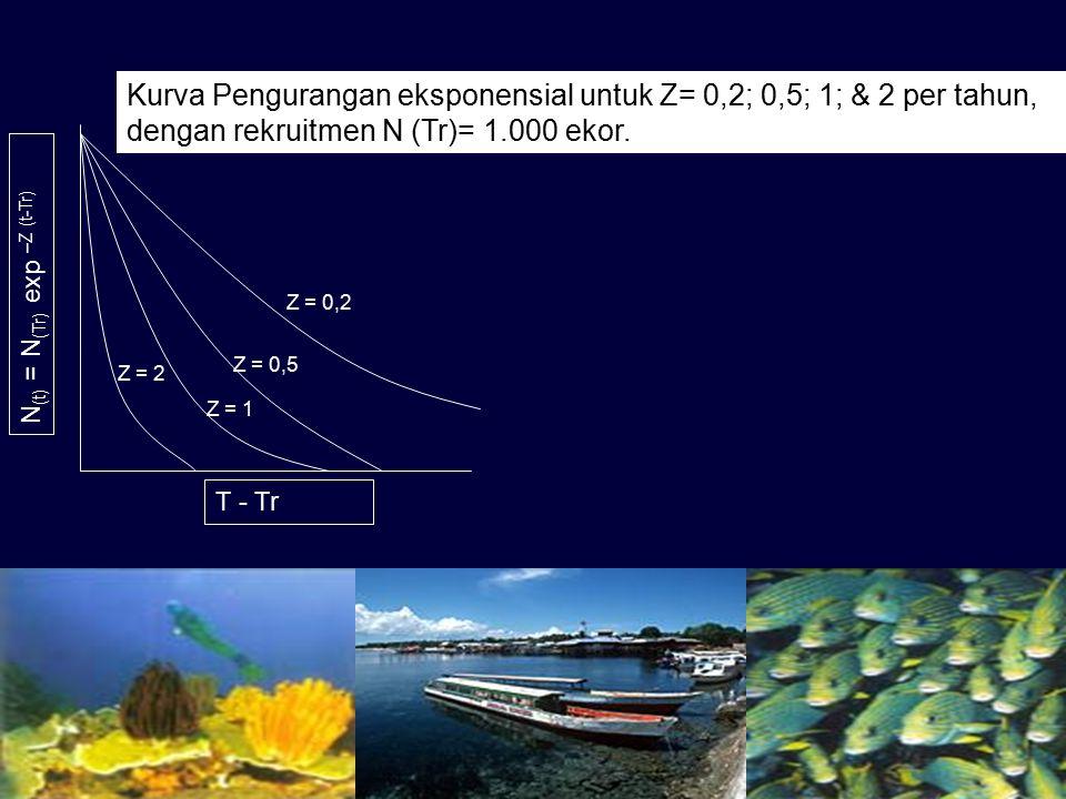 Kurva Pengurangan eksponensial untuk Z= 0,2; 0,5; 1; & 2 per tahun, dengan rekruitmen N (Tr)= 1.000 ekor.