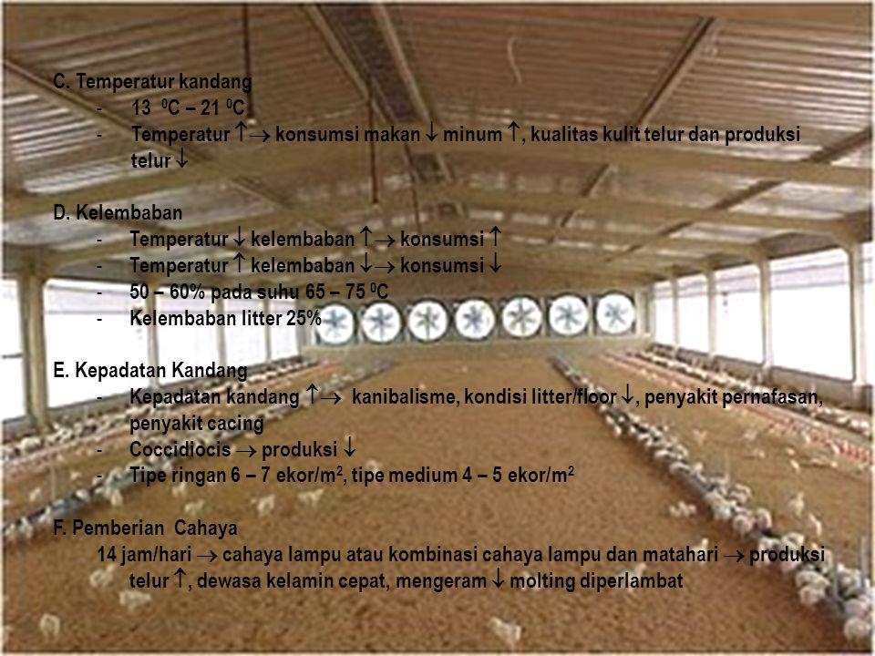 C. Temperatur kandang 13 0C – 21 0C. Temperatur  konsumsi makan  minum , kualitas kulit telur dan produksi telur 