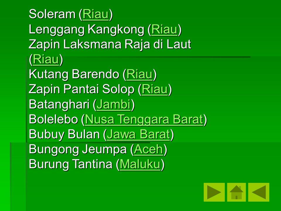Soleram (Riau) Lenggang Kangkong (Riau) Zapin Laksmana Raja di Laut (Riau) Kutang Barendo (Riau) Zapin Pantai Solop (Riau)
