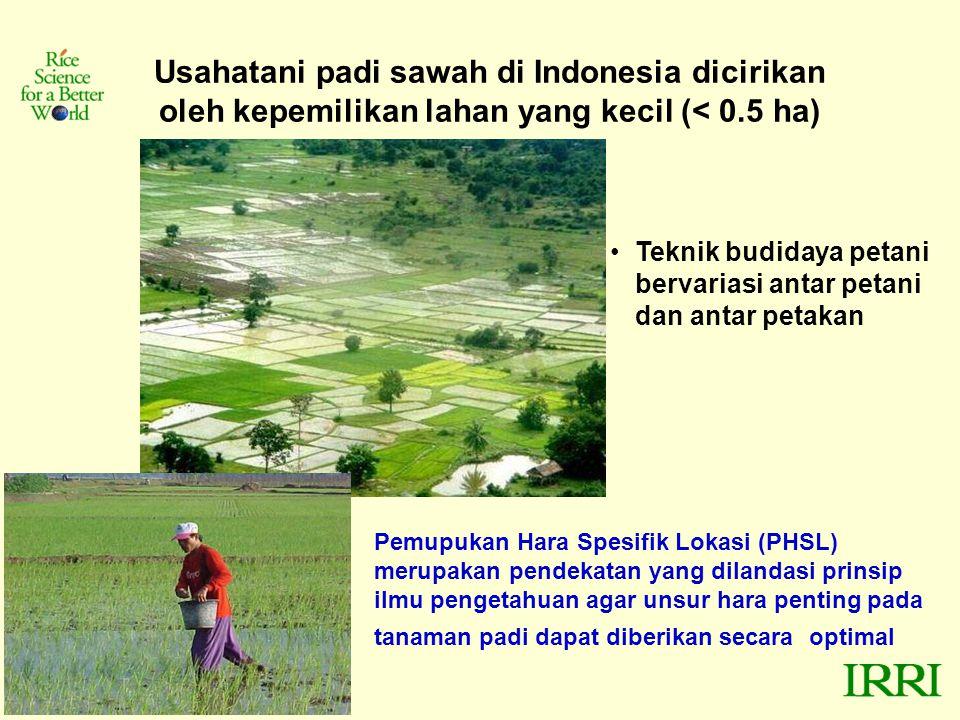 Usahatani padi sawah di Indonesia dicirikan oleh kepemilikan lahan yang kecil (< 0.5 ha)