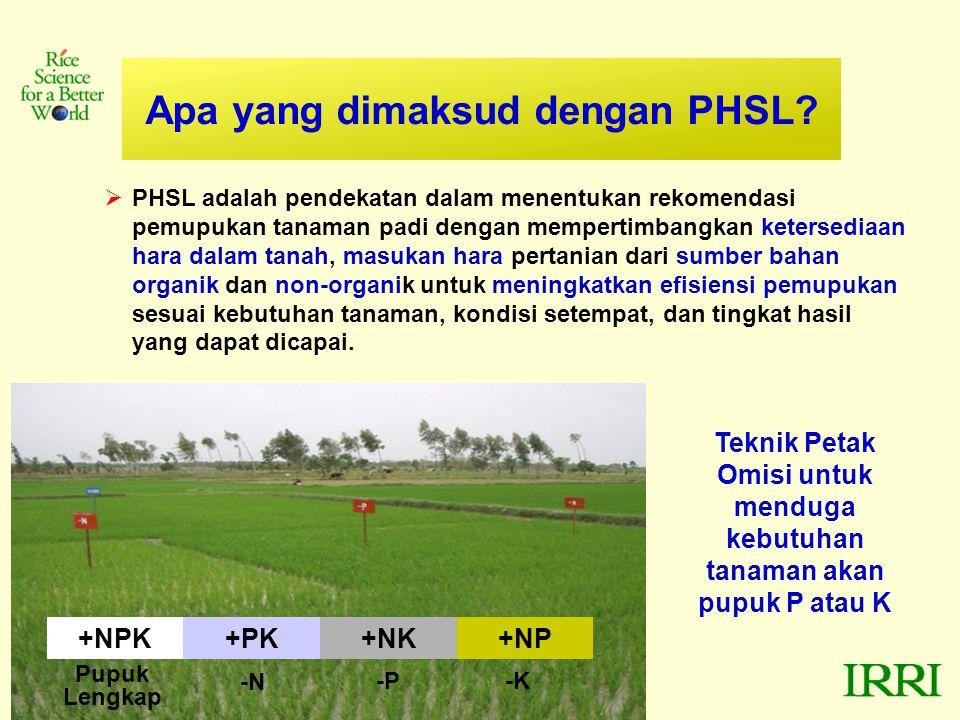 Apa yang dimaksud dengan PHSL