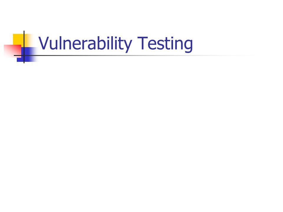 Vulnerability Testing