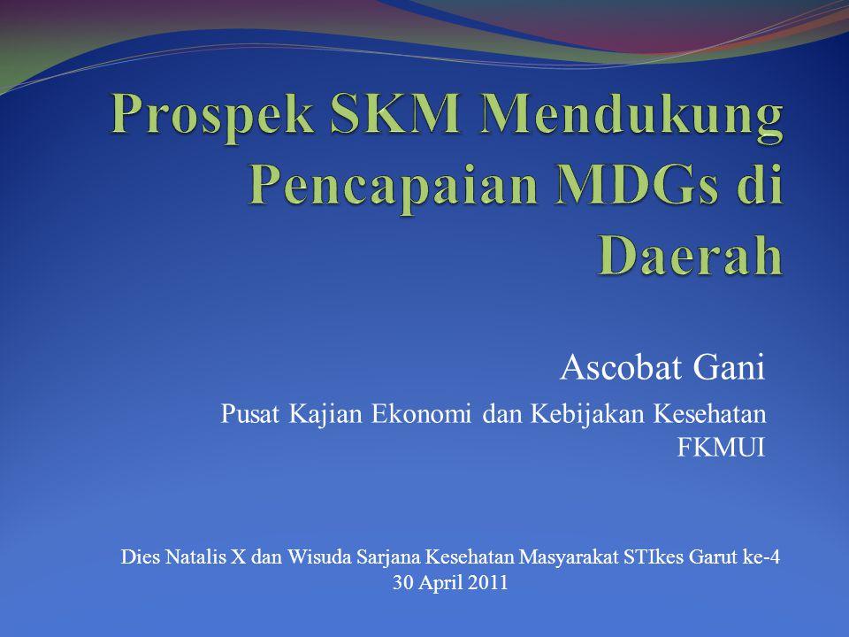 Prospek SKM Mendukung Pencapaian MDGs di Daerah