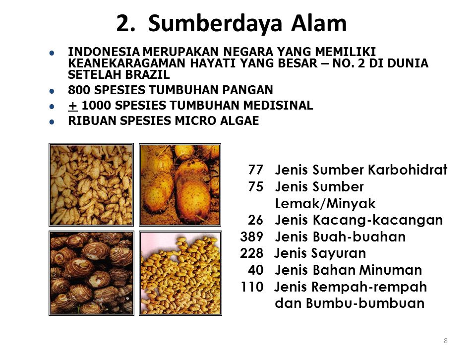 2. Sumberdaya Alam 77 Jenis Sumber Karbohidrat 75 Jenis Sumber