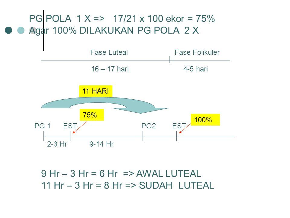 PG POLA 1 X => 17/21 x 100 ekor = 75%