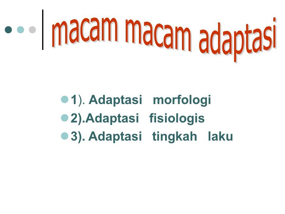 3). Adaptasi tingkah laku