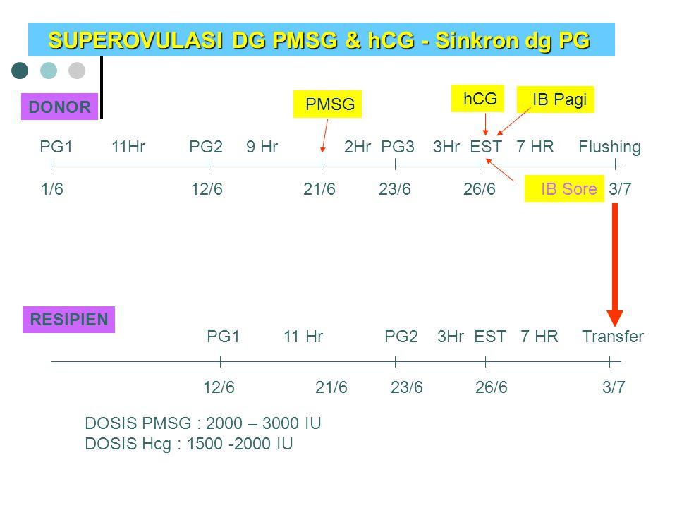 SUPEROVULASI DG PMSG & hCG - Sinkron dg PG