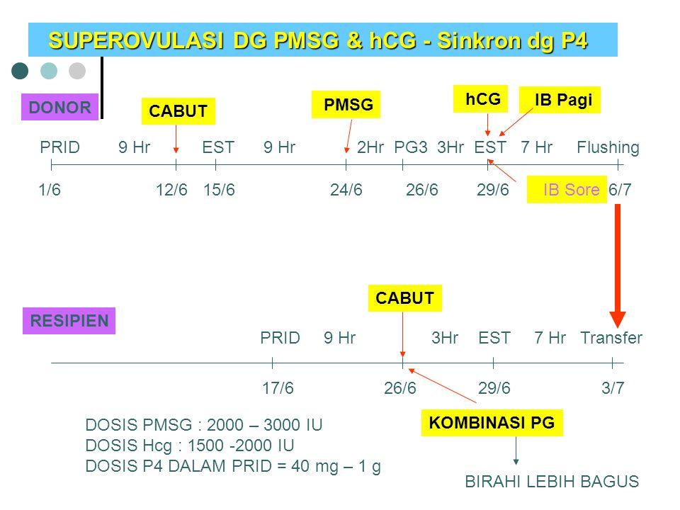 SUPEROVULASI DG PMSG & hCG - Sinkron dg P4