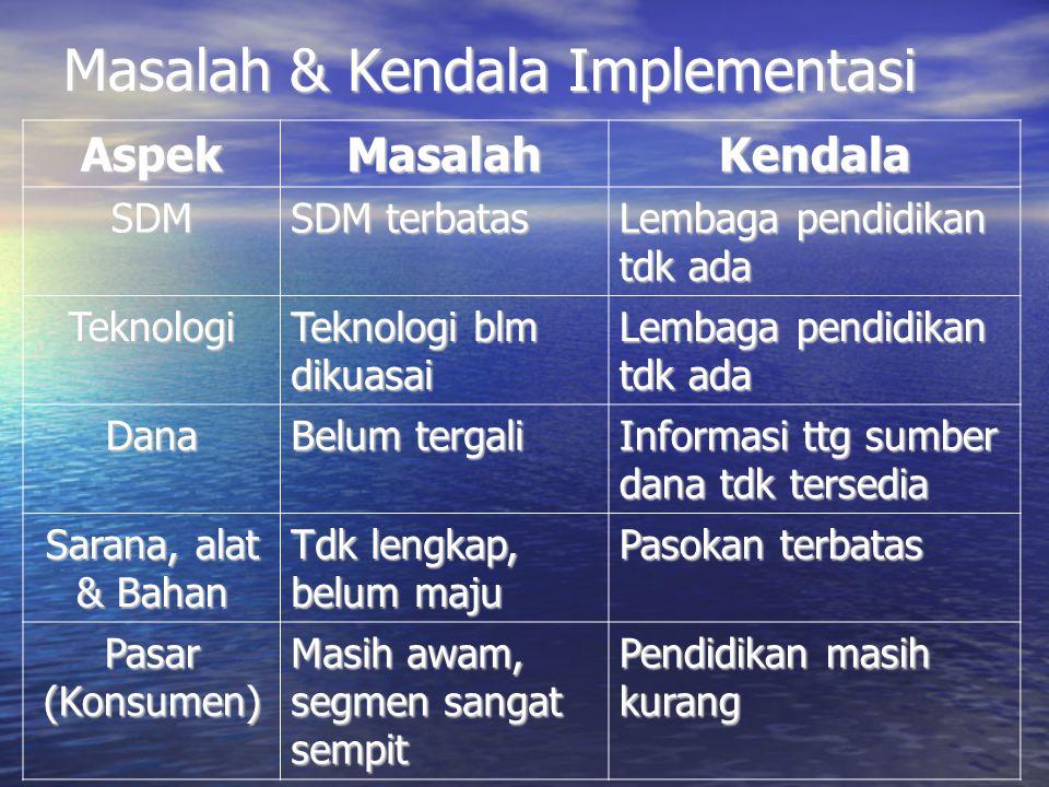 Masalah & Kendala Implementasi