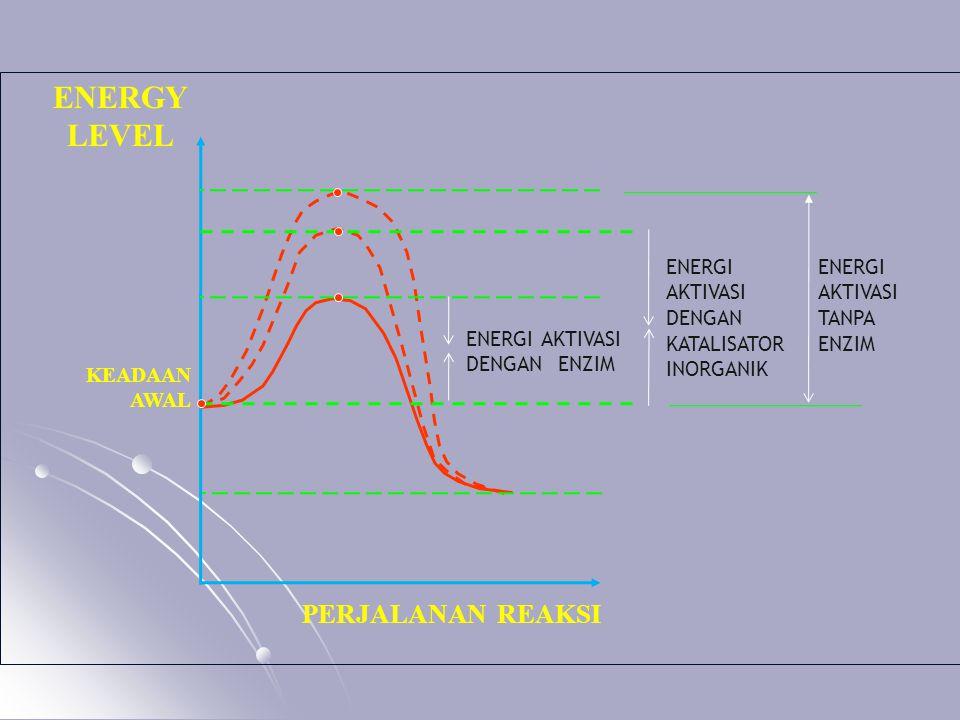 ENERGY LEVEL PERJALANAN REAKSI ENERGI AKTIVASI DENGAN KATALISATOR