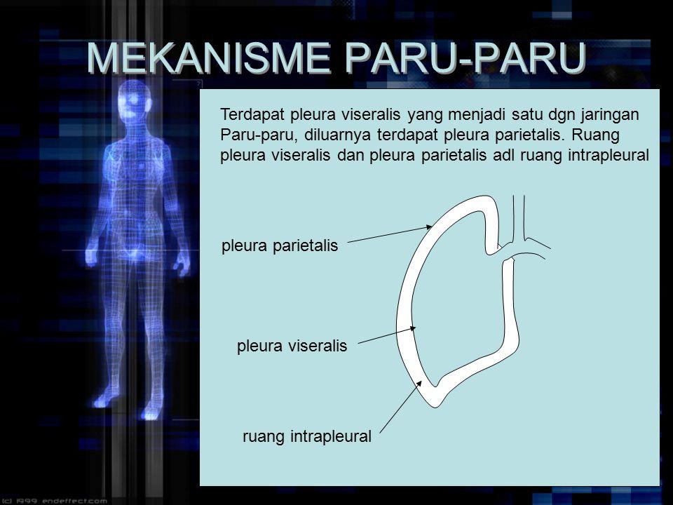 MEKANISME PARU-PARU Terdapat pleura viseralis yang menjadi satu dgn jaringan. Paru-paru, diluarnya terdapat pleura parietalis. Ruang.