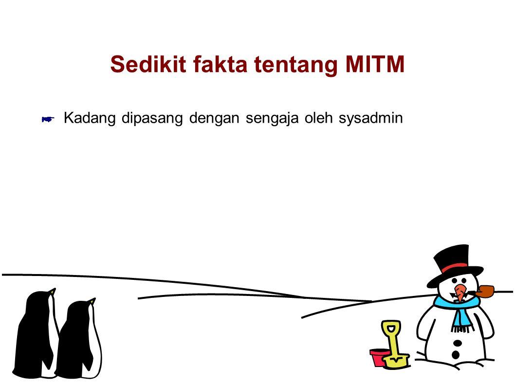 Sedikit fakta tentang MITM