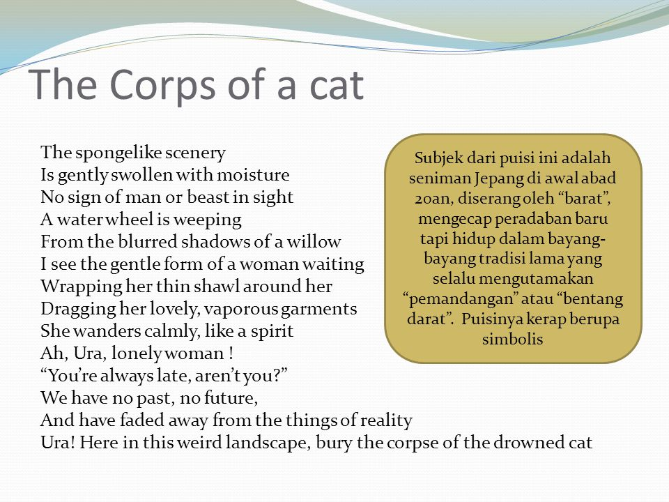 The Corps of a cat