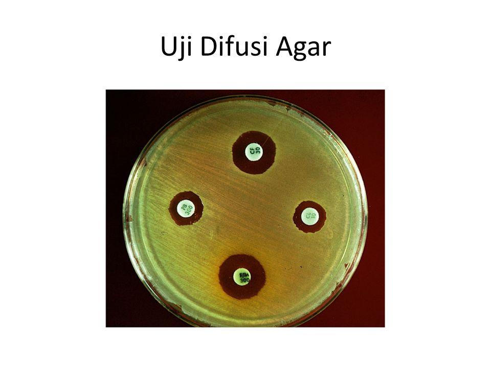 Uji Difusi Agar