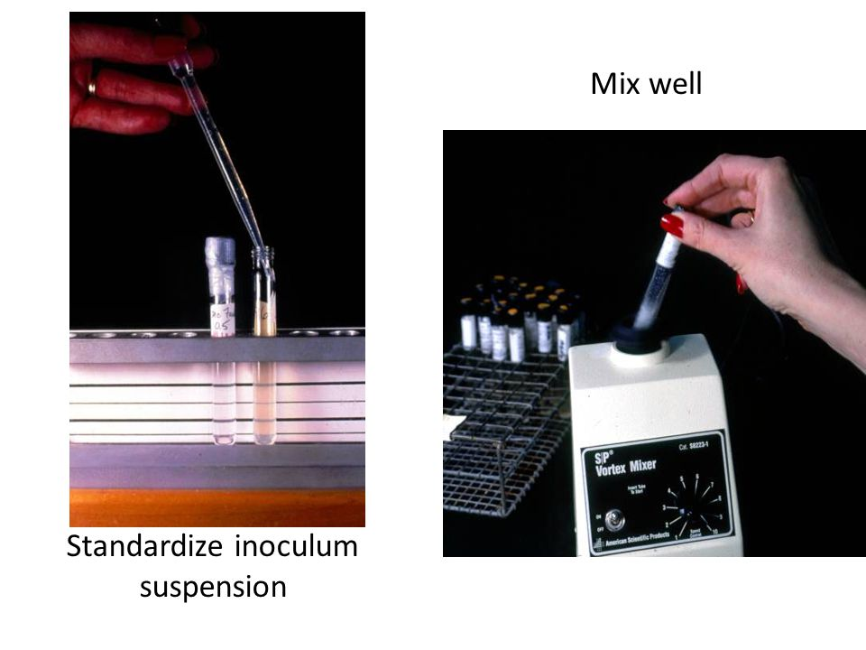 Mix well Standardize inoculum suspension