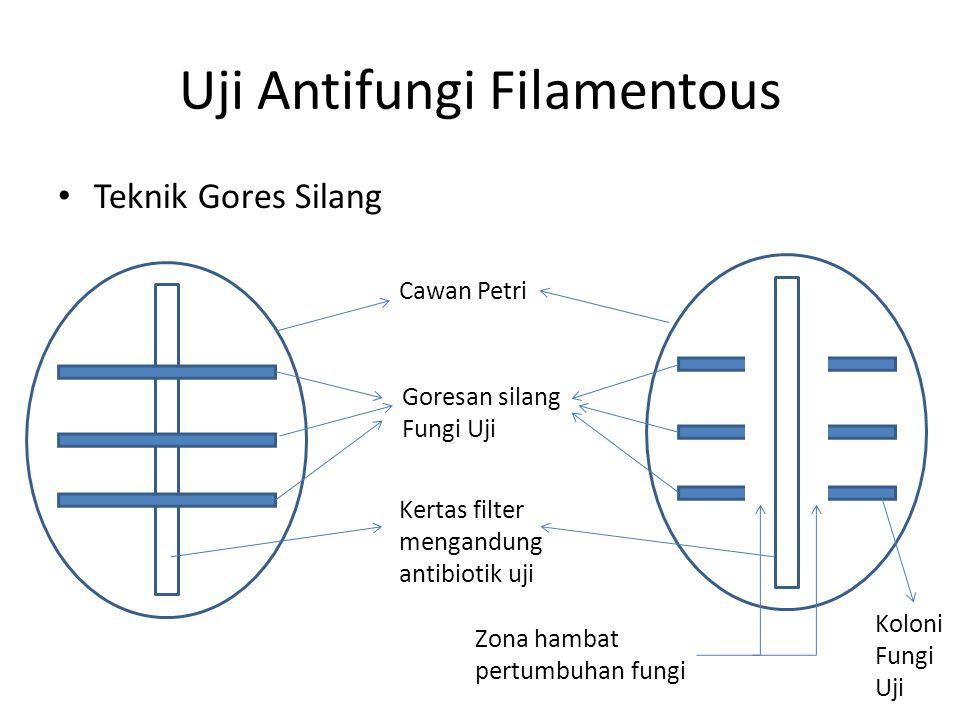 Uji Antifungi Filamentous